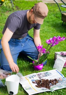 biolan_garden